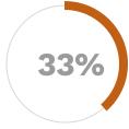 Application Progress Graph 33%