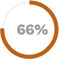 Application Progress Graph 66%